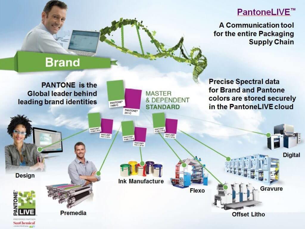 Схема PantoneLive